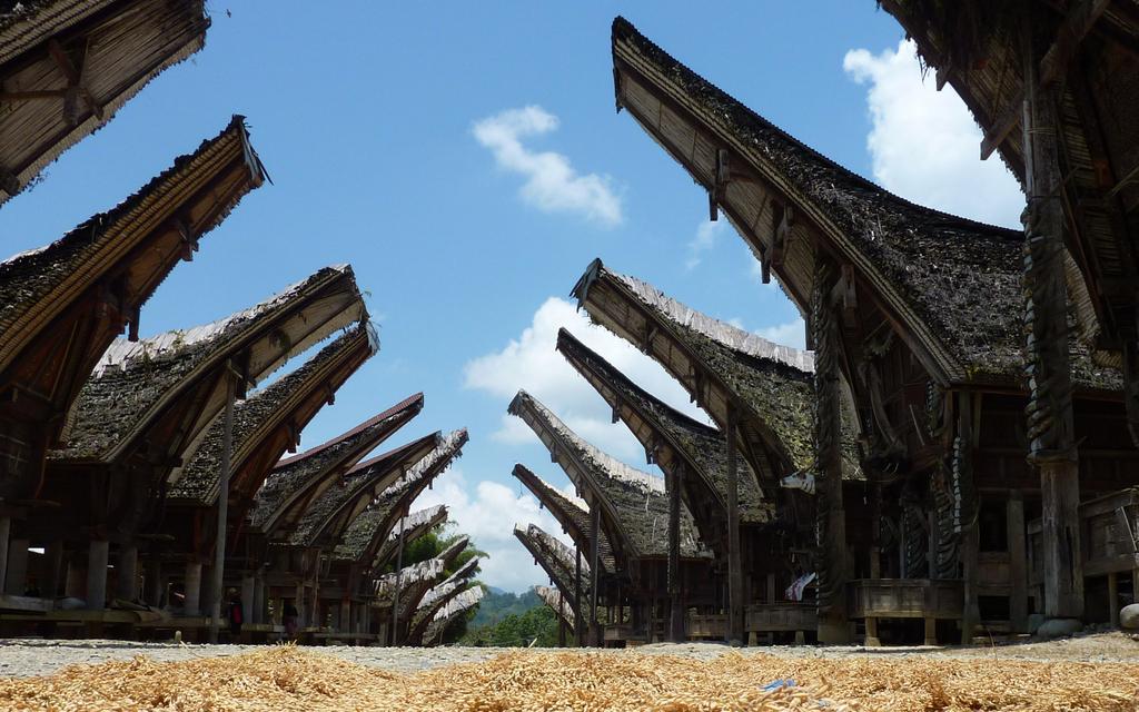 Tana Toraja: le case tipiche a Pallawa