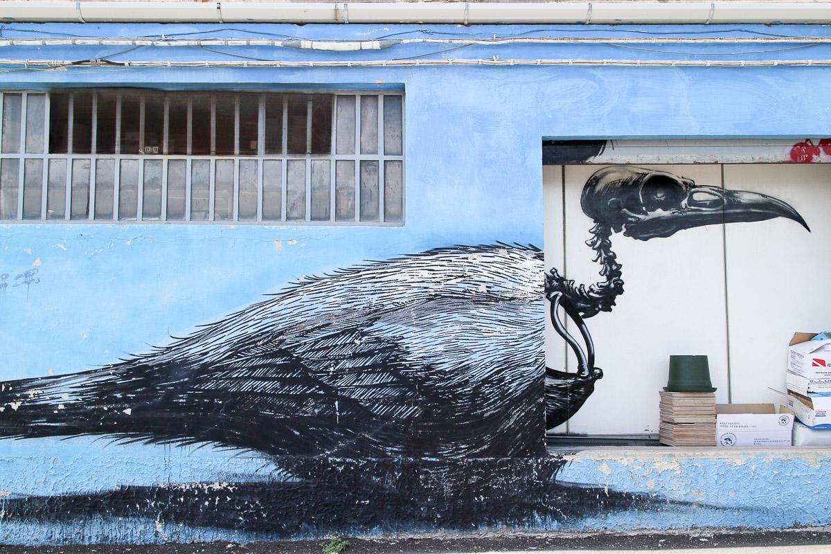 017_street-art_ancona_carapaucostante
