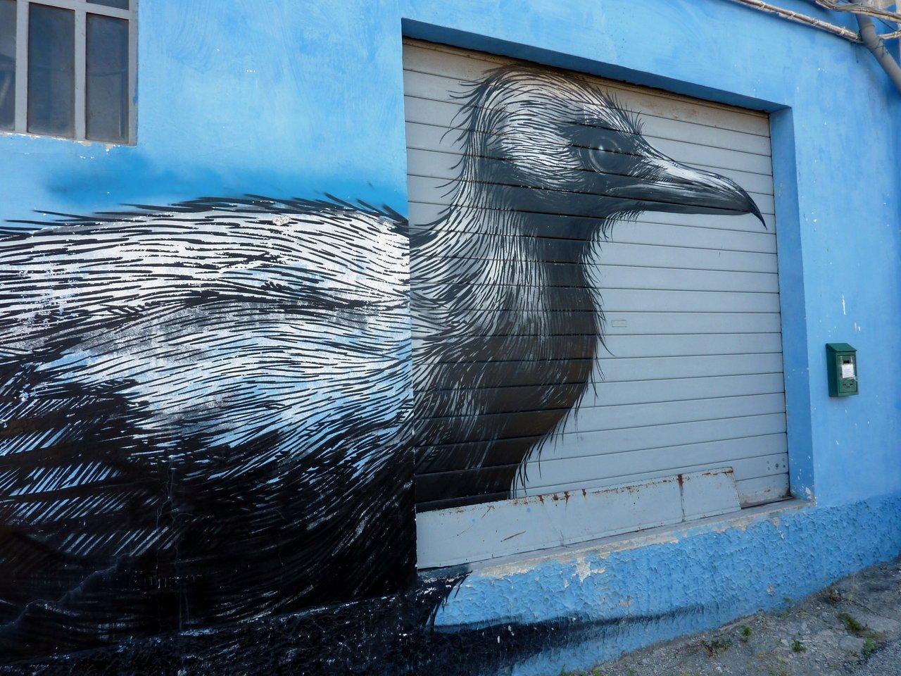 street-art_ancona_carapaucostante-3