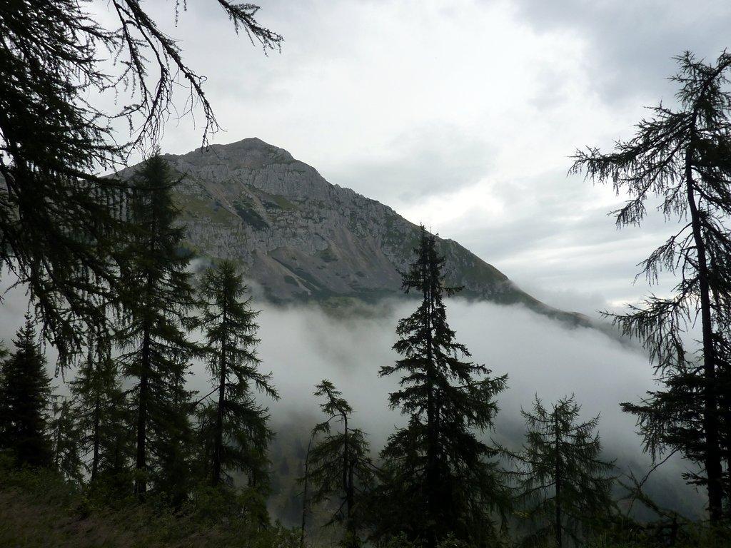 escursione al croz dell'altissimo: veduta dal bosco