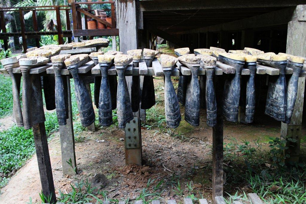 boots-rainforest