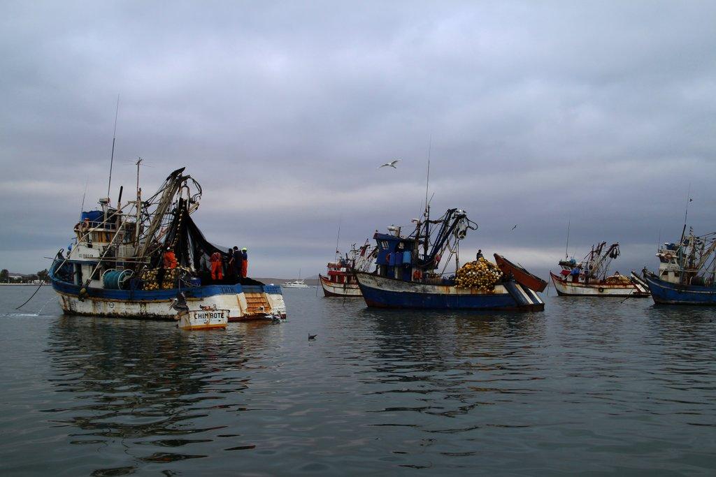 Barche di pescatori a Paracas