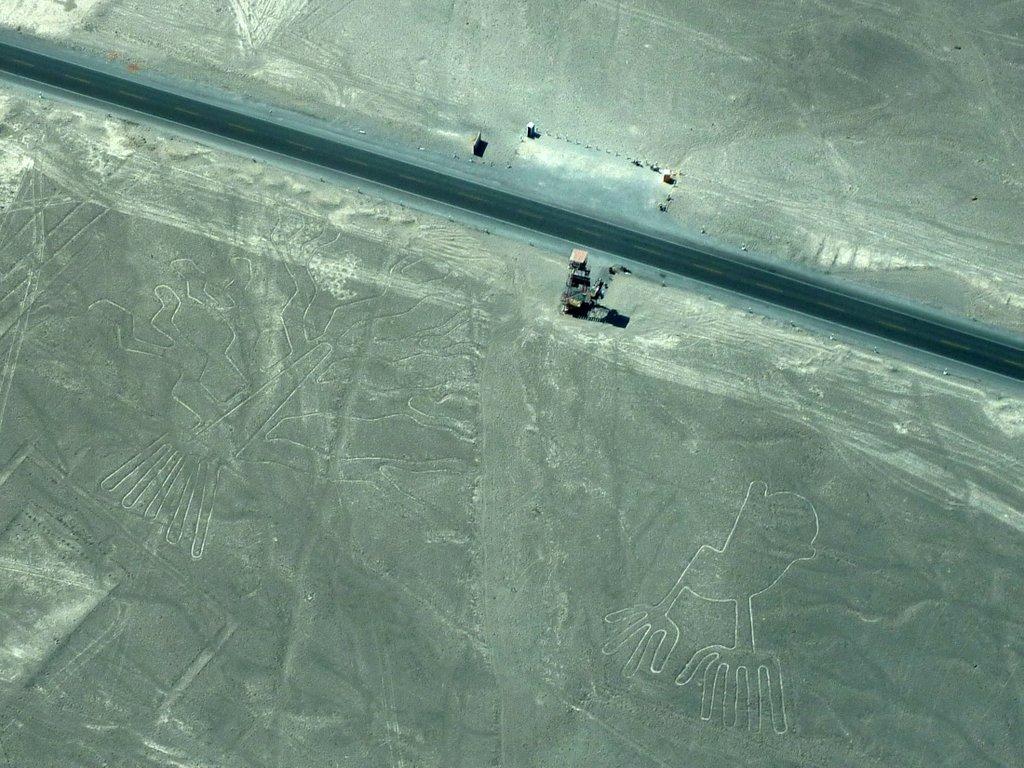 Linee di Nazca. L'albero e la mano