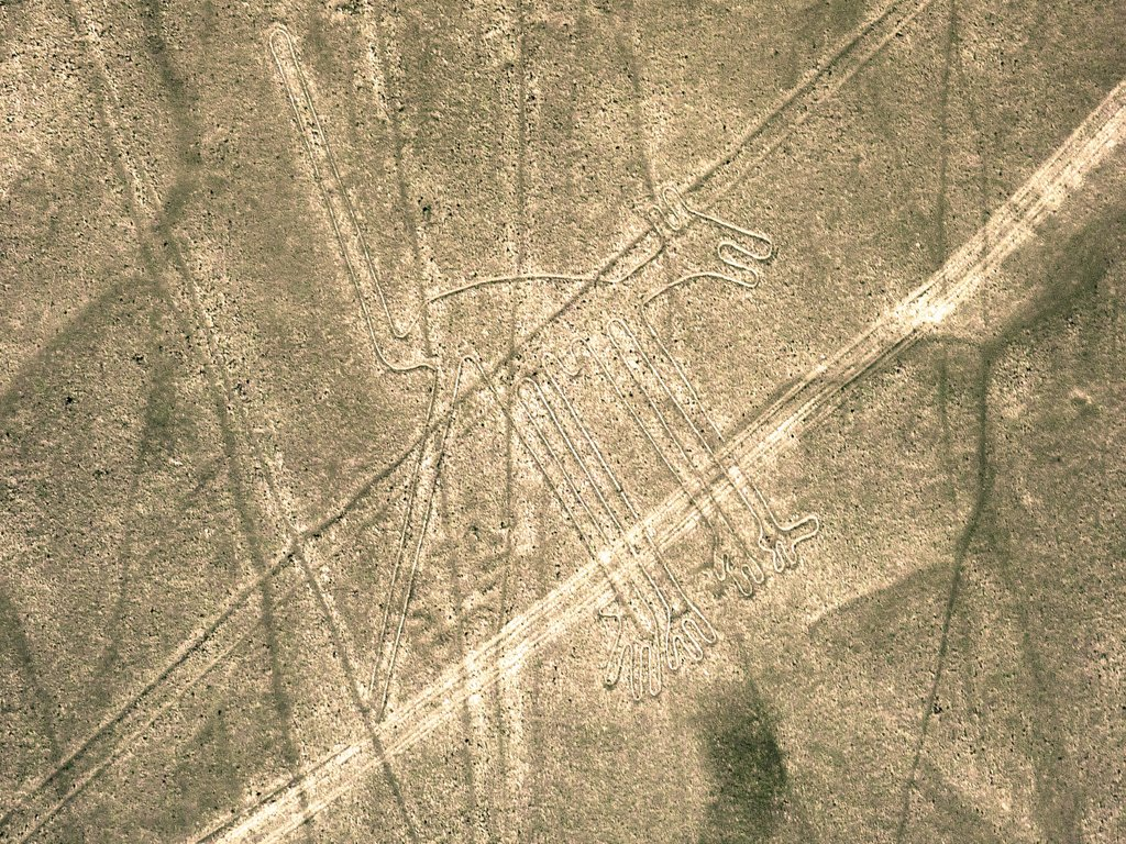 Linee di Nazca. Il cane