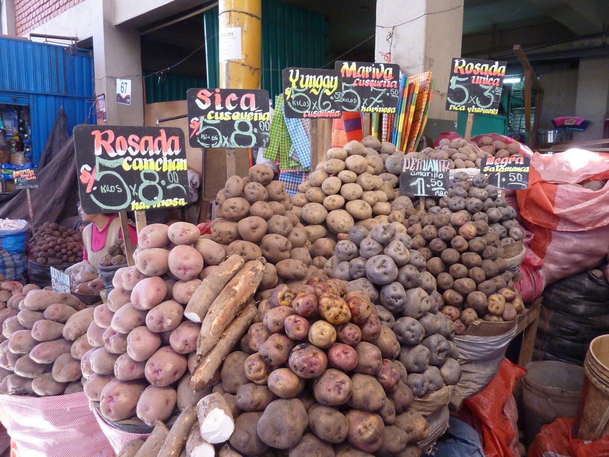 mercato coperto di san camilo: cassava