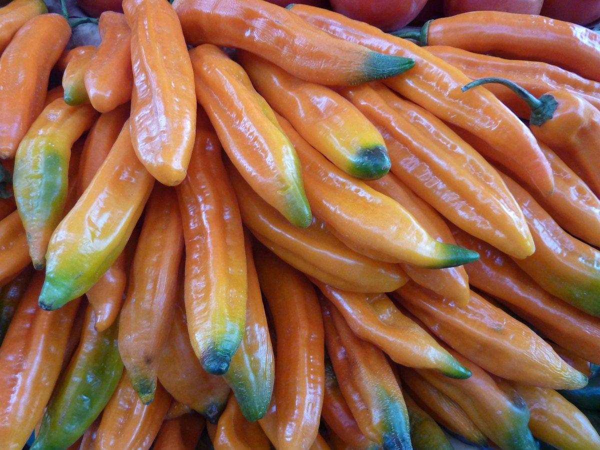 mercato coperto di san camilo: peperoni