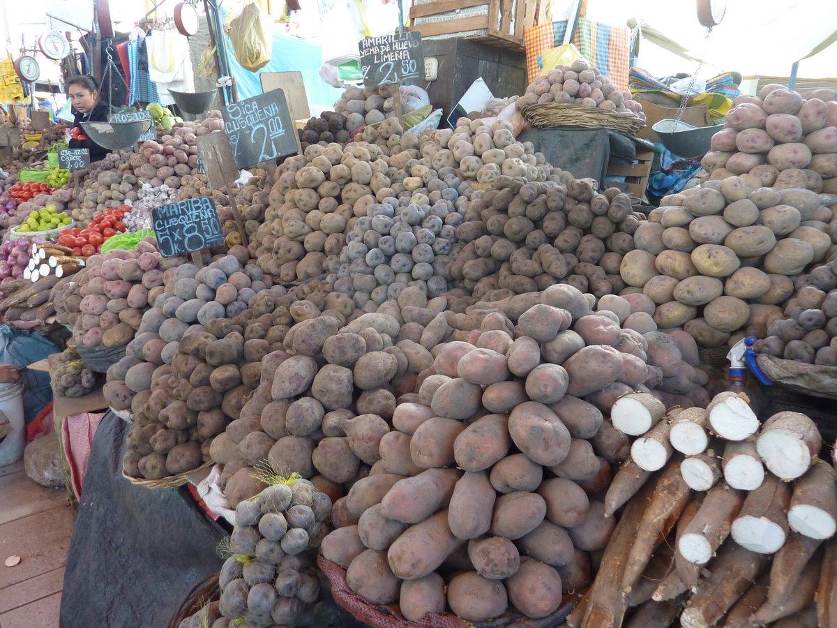 mercato coperto di san camilo: patate