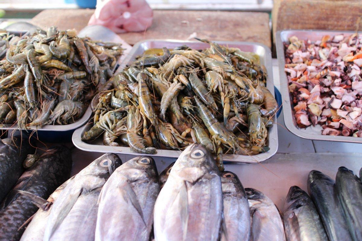 mercato coperto di san camilo: pesce