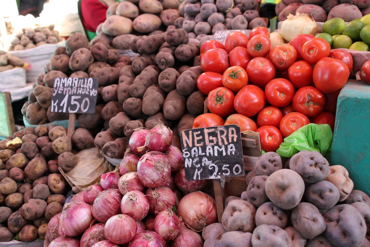 mercato coperto di san camilo: cipolle
