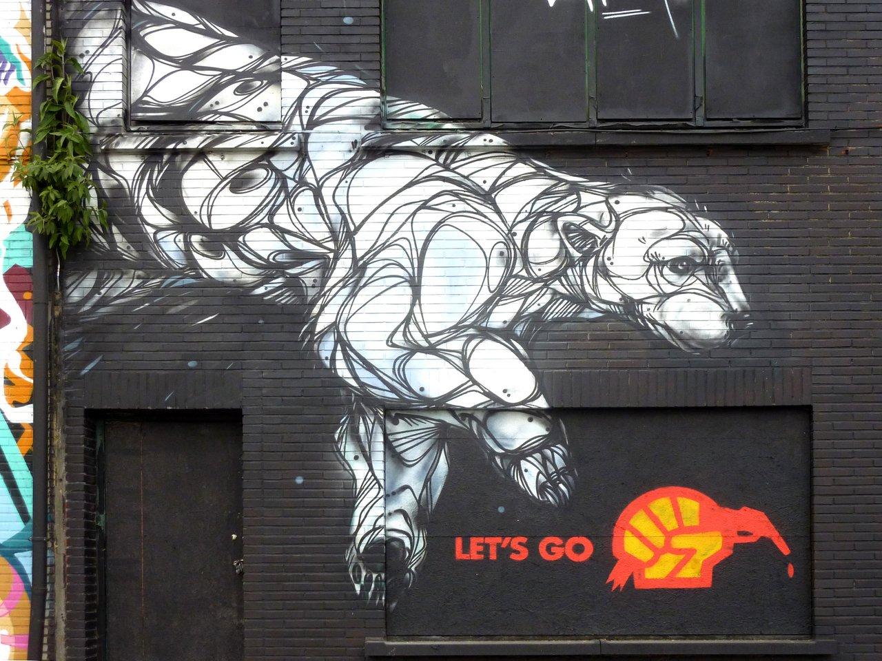 graffiti di anversa e street art: Orso polare di Dzia a New Zuremborg
