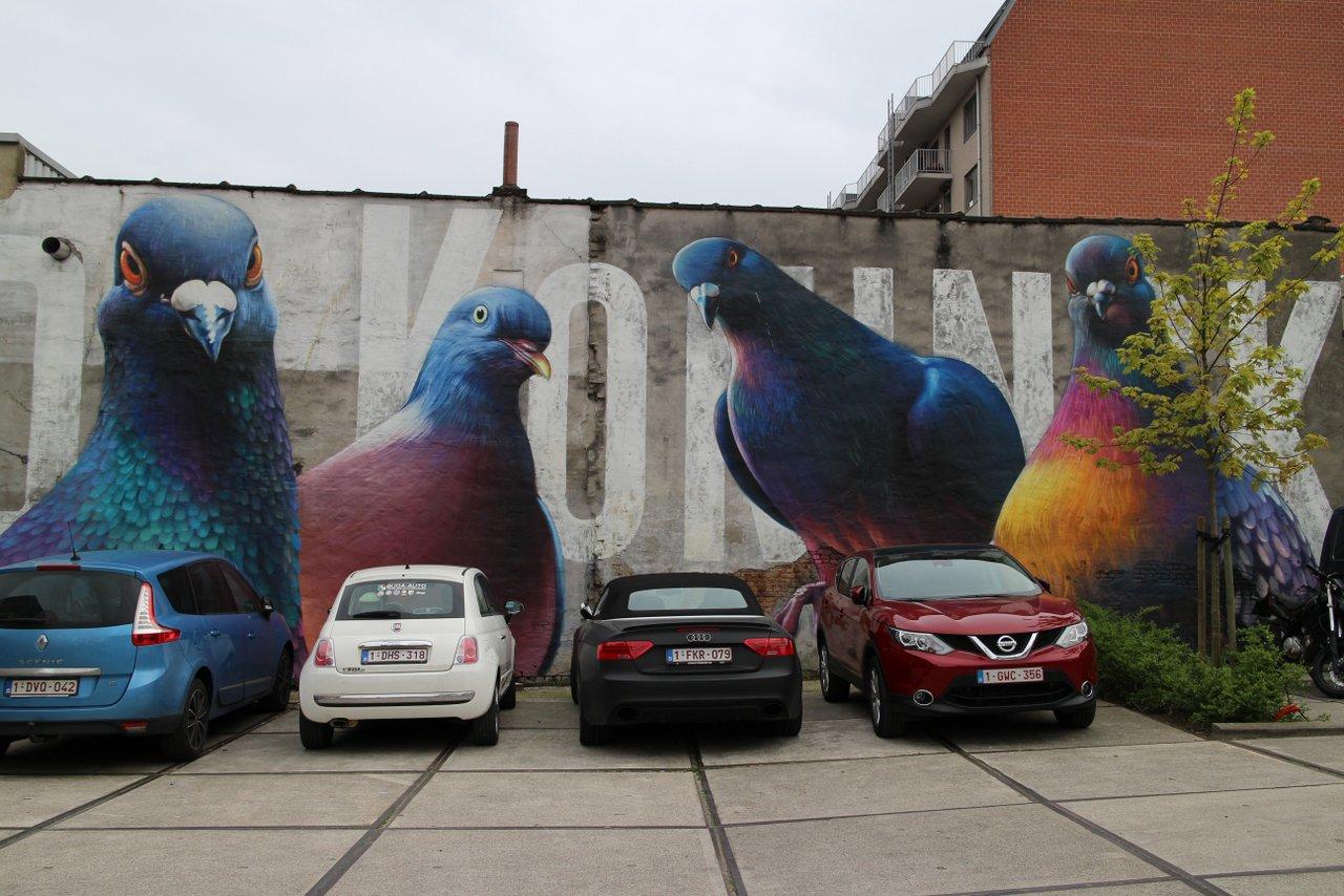 graffiti di anversa e street art: De Koninck