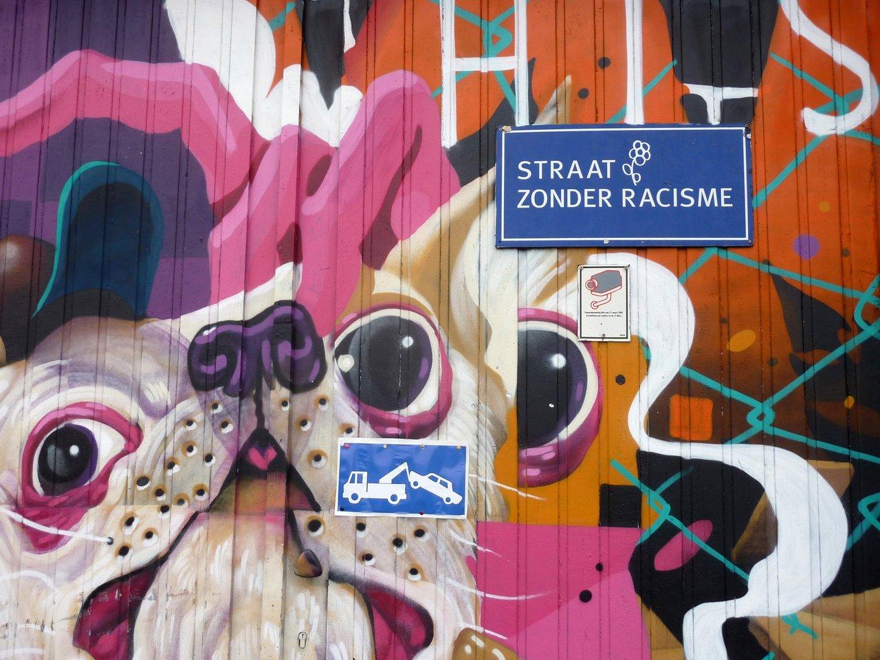 graffiti di anversa e street art: Strada senza razzismo - New Zuremborg