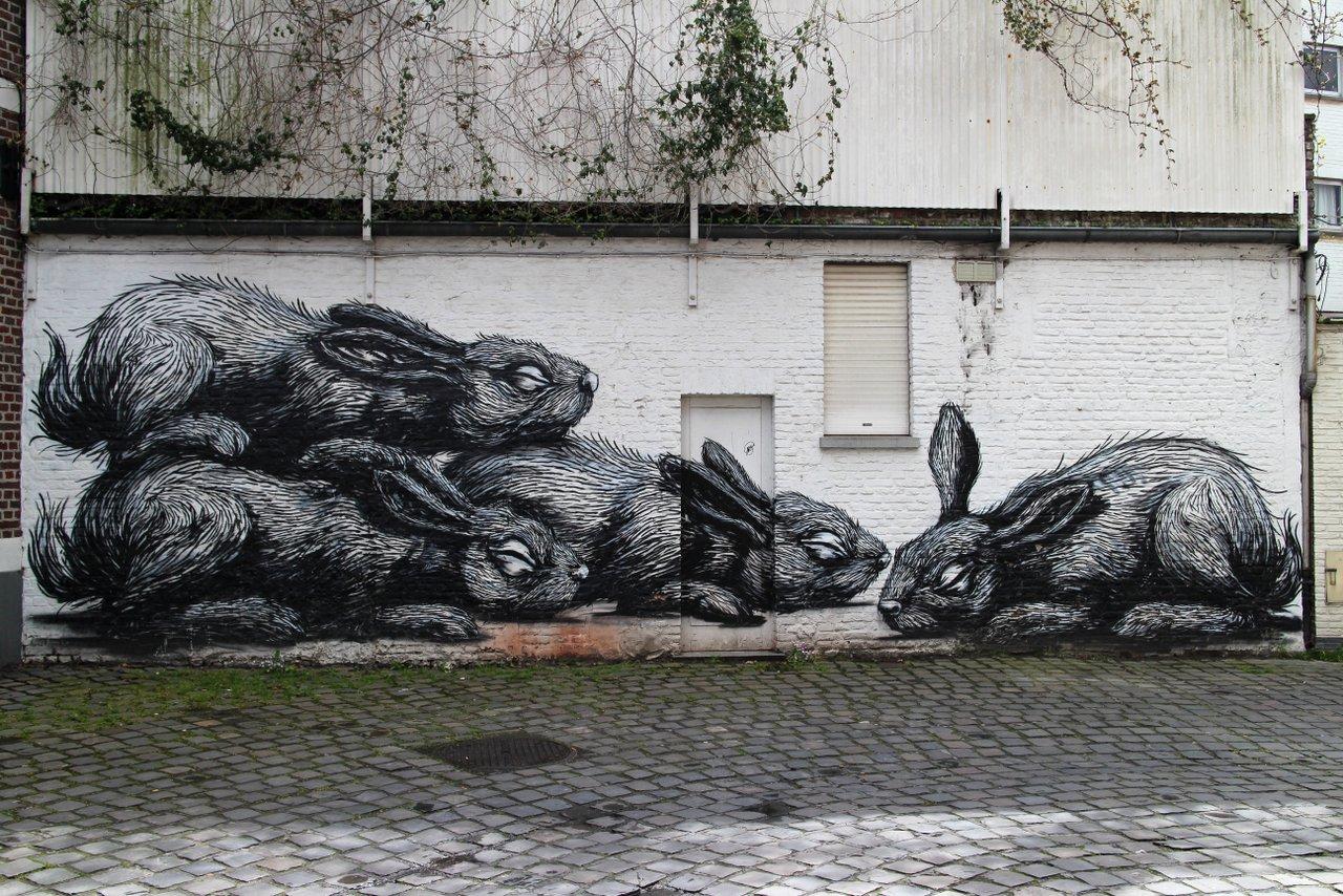 Street art e Graffiti di Gent: i conigli di ROA