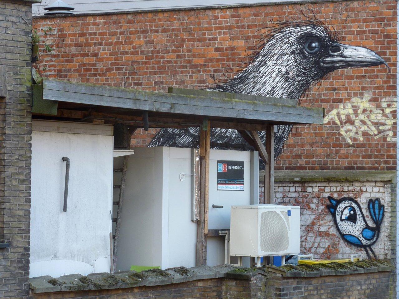 Street art e Graffiti di Gent: il corvo di ROA