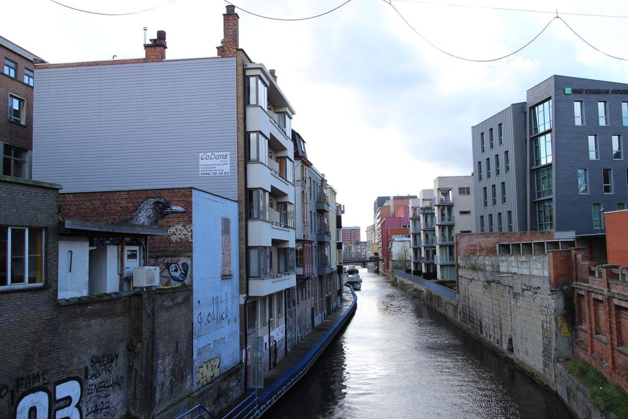 Graffiti di Gent: Il corvo di ROA sui canali