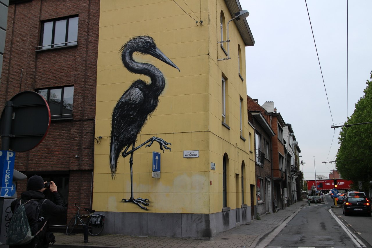Graffiti di Gent: l'airone di ROA