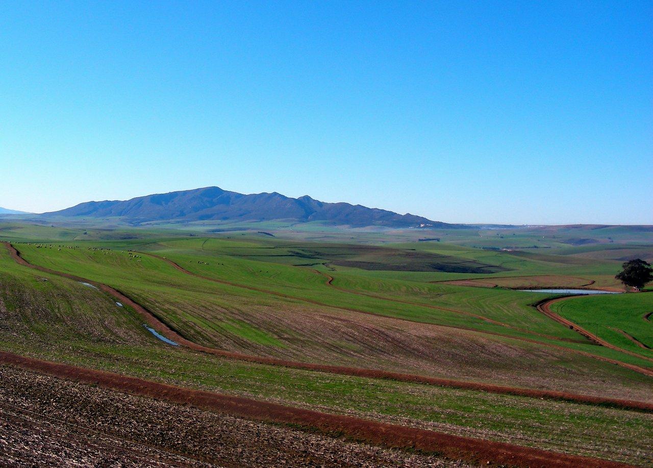 sudafrica itinerario: la garden route