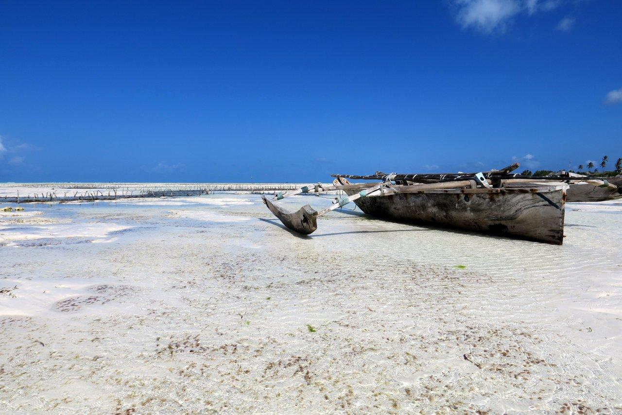 tanzania itinerario fai da te. La spiaggia di Jambiani