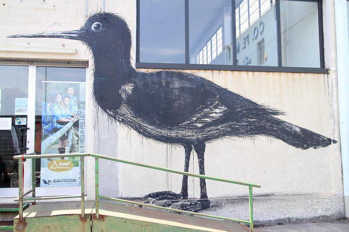 019_street-art_ancona_carapaucostante
