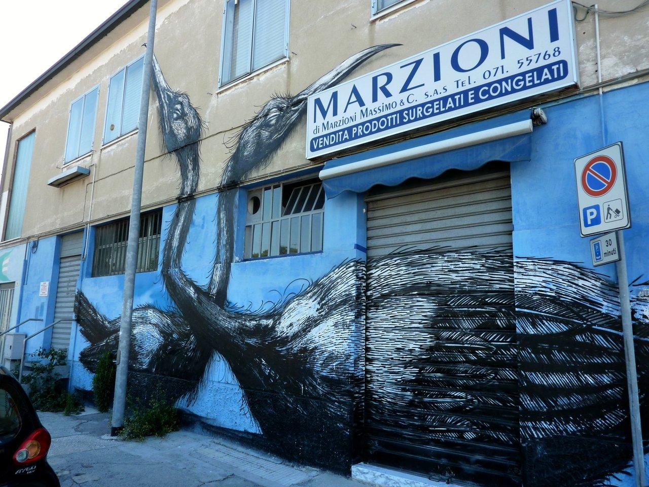street-art_ancona_carapaucostante-2
