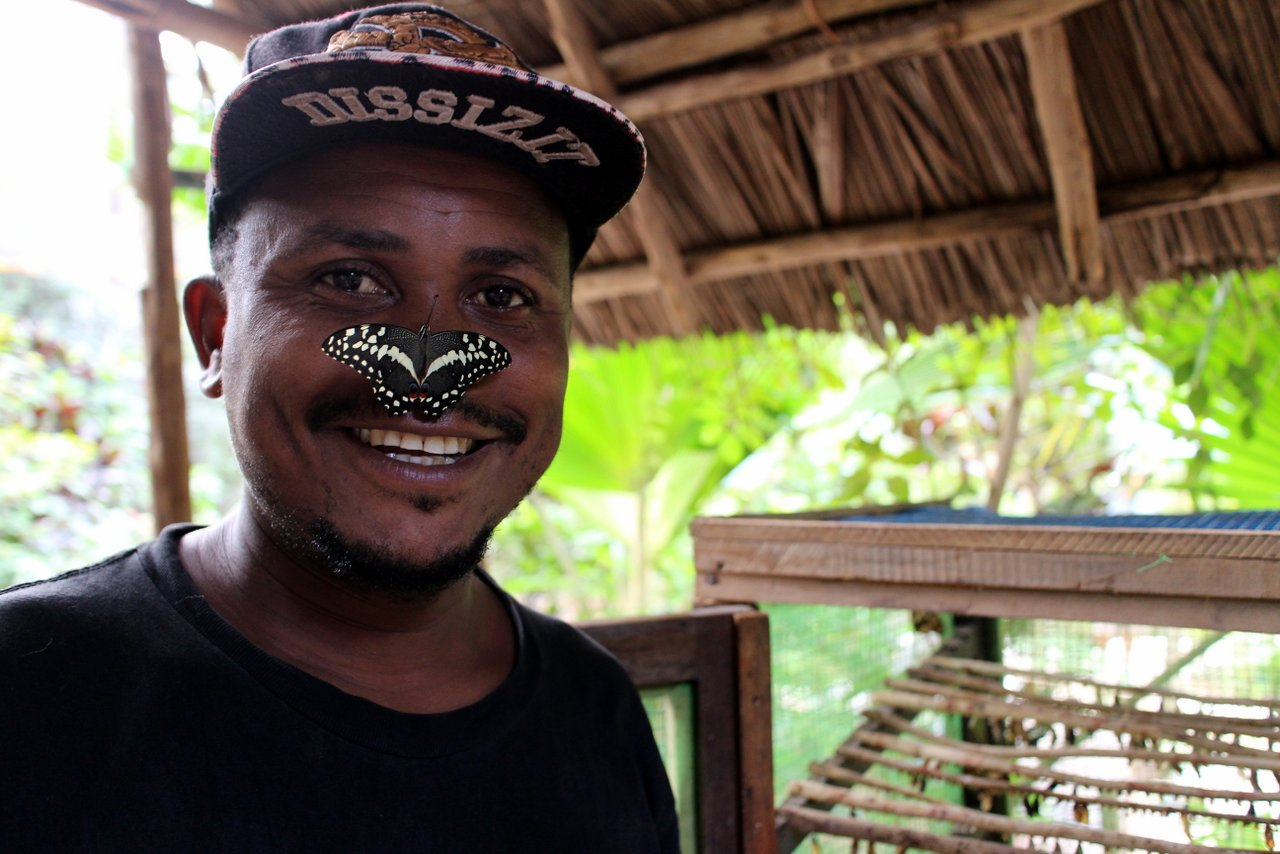 escursioni a zanzibar: butterfly center