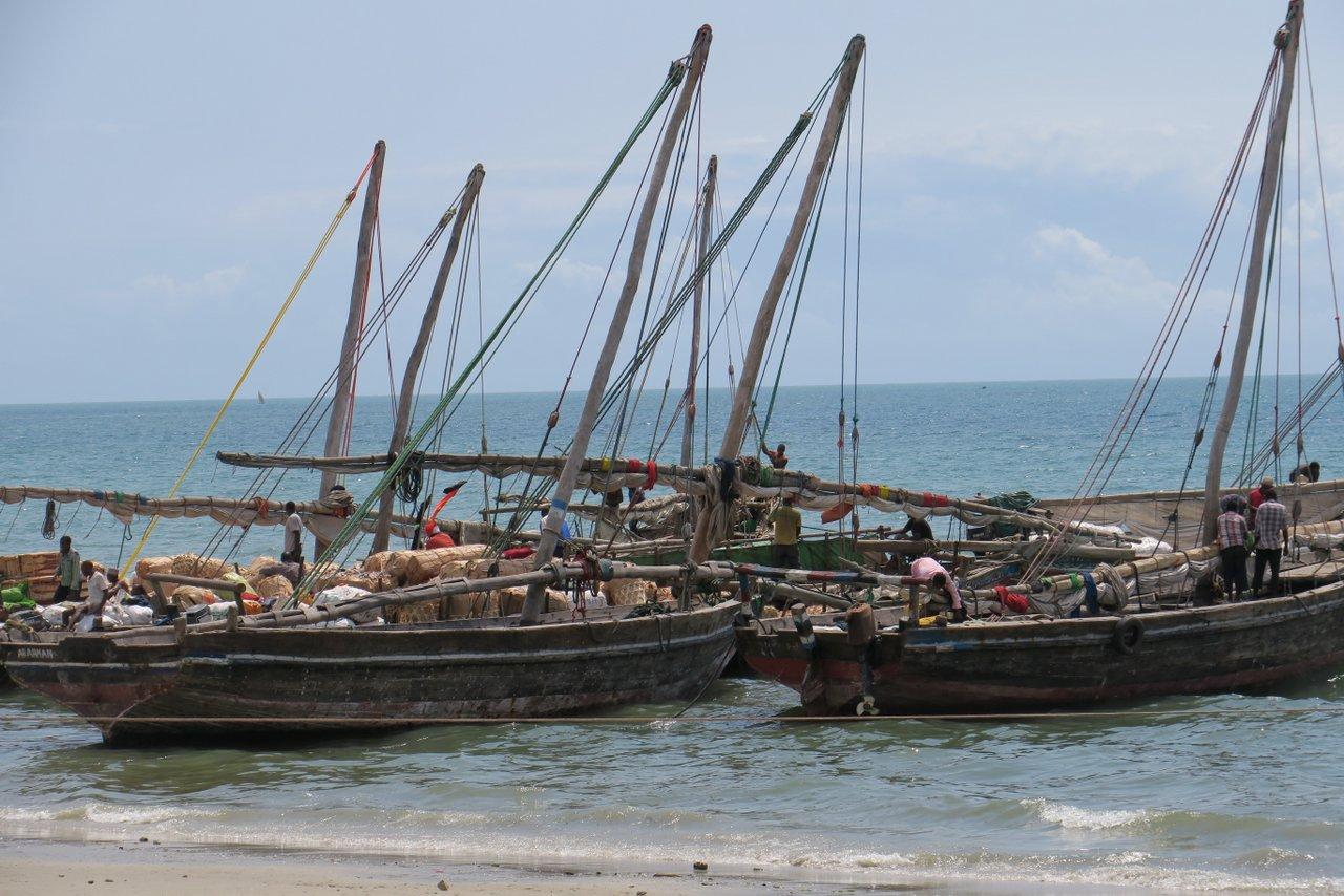 cosa vedere a bagamoyo: pescatori al lavoro