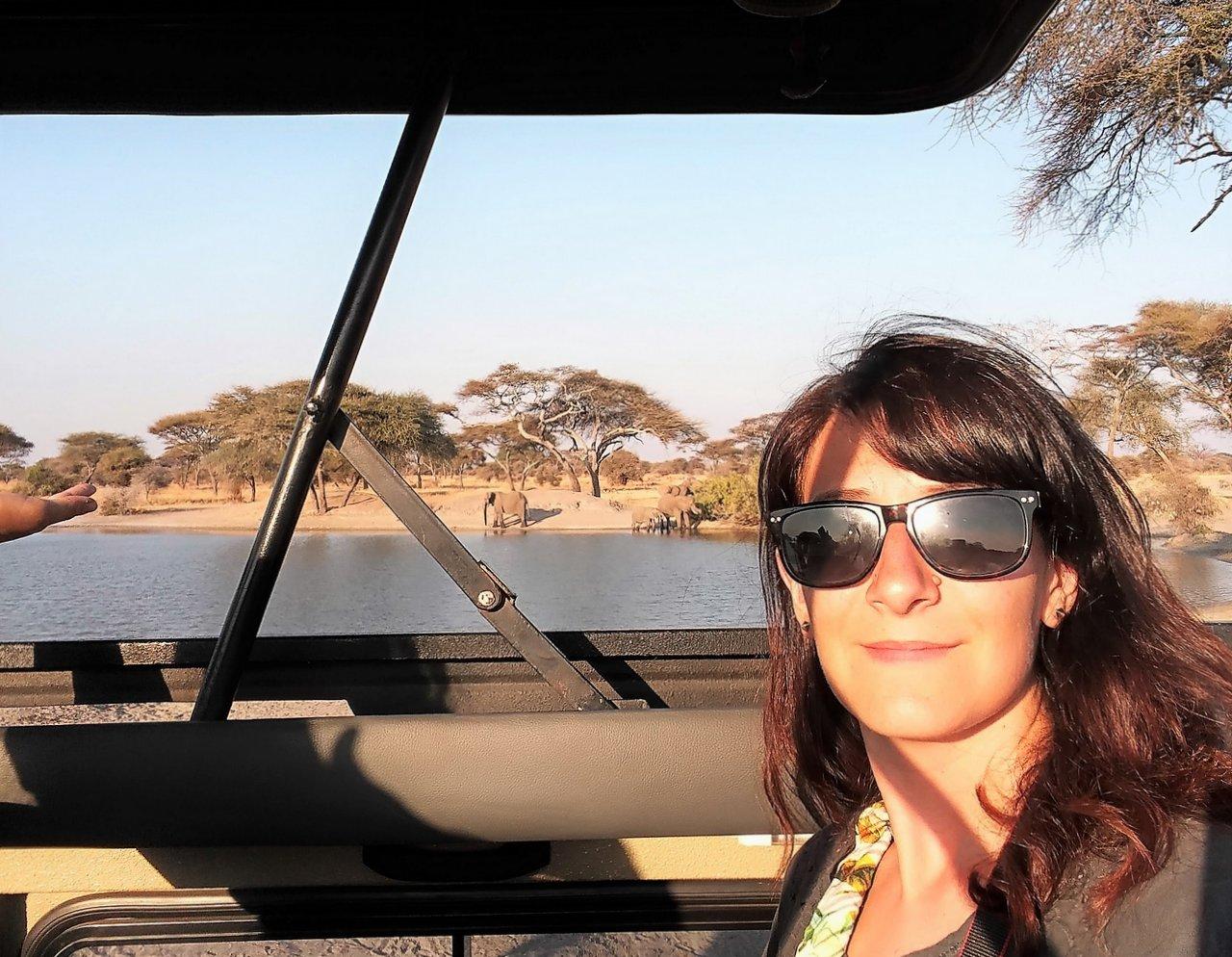organizzare un safari in tanzania: La vista dal nostro fuoristrada