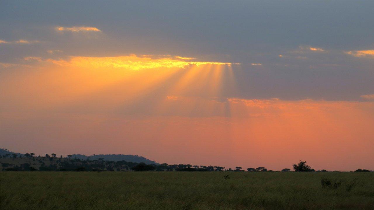 organizzare un safari in tanzania: tramonto nel serengeti