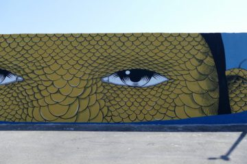 street art civitanova marche: opera di Andrea Casciu