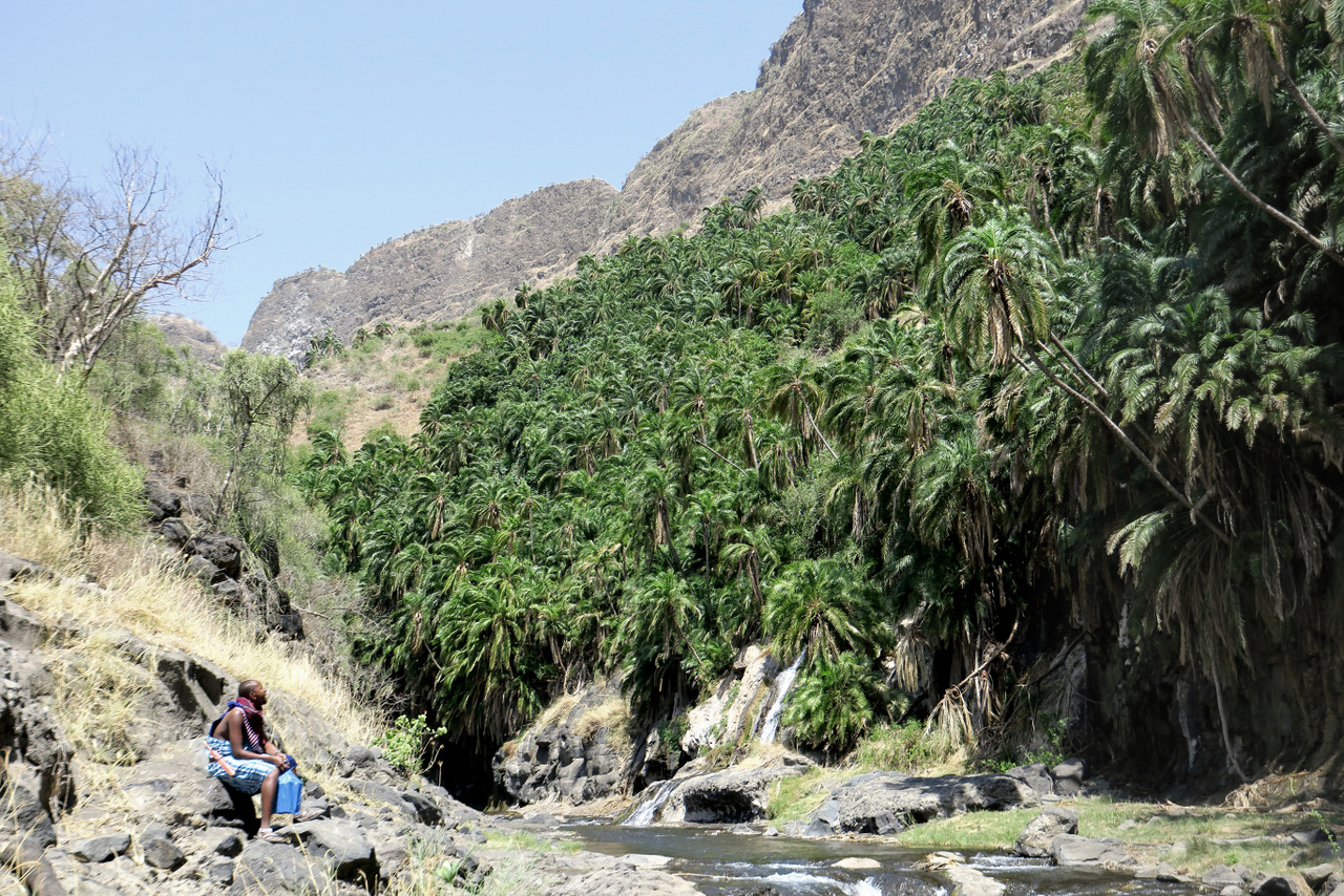 lago natron tanzania: Lepara e il palmeto