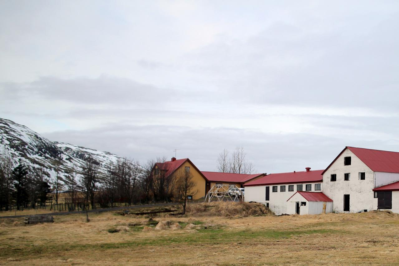 islanda in inverno low cost: fattoria in cui abbiamo pernottato
